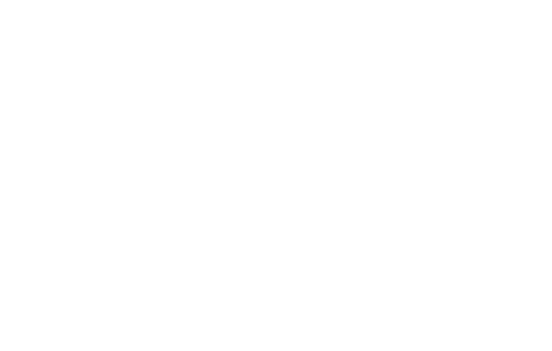 Shortly Festival